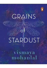 Grains of Stardust